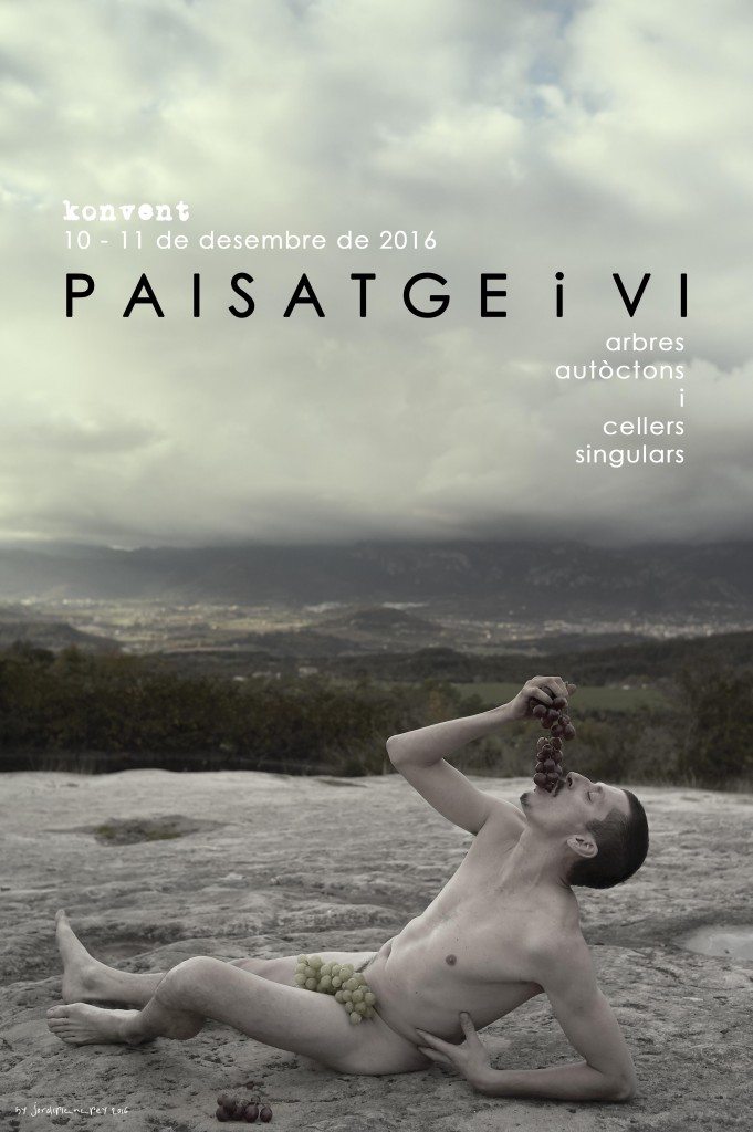 paisatgeivi1016